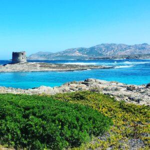"""O plajă de vis! Stintino ,, Spiaggia La Pelosa""""-Sardinia, Italia."""