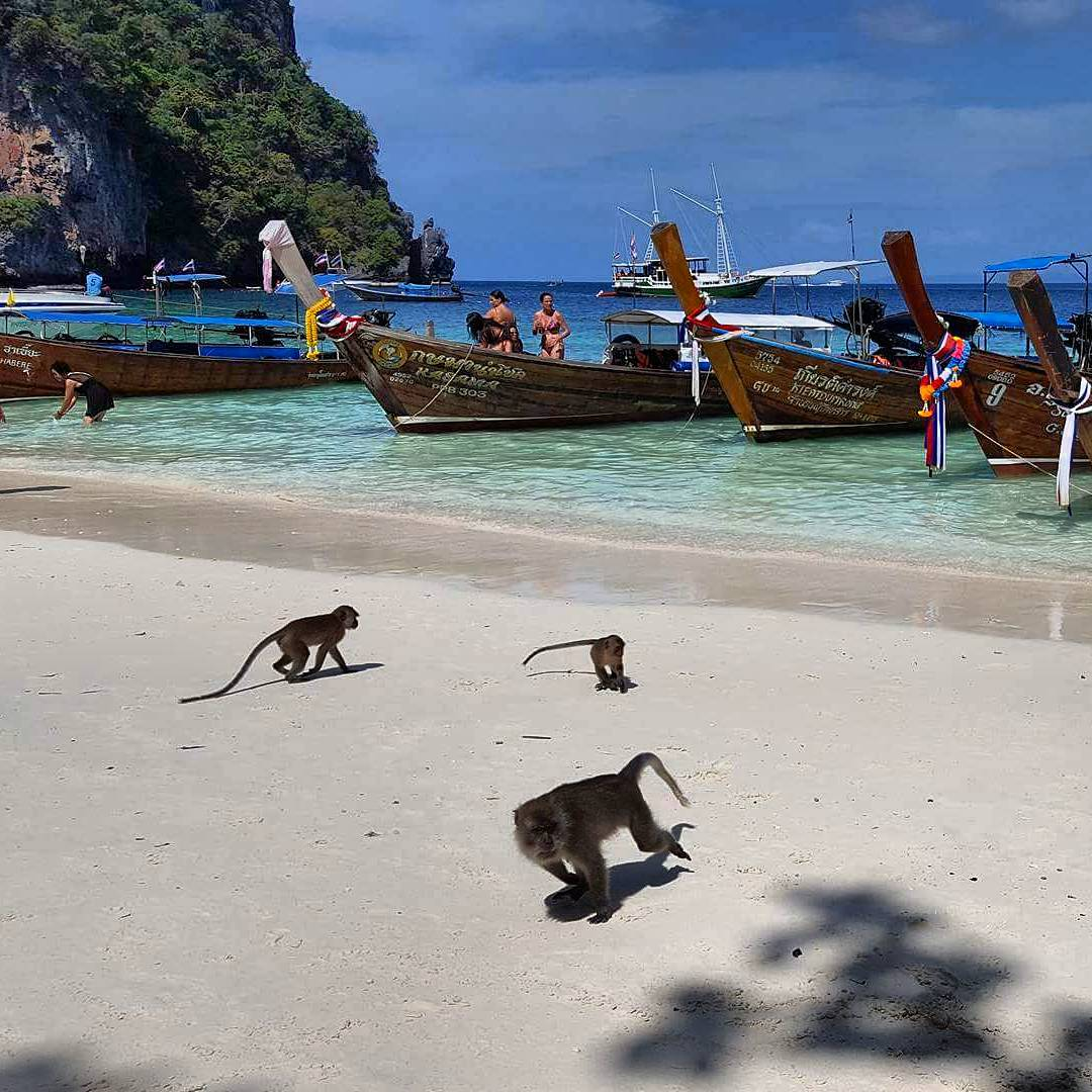 Încă o poveste din Thailanda! Monkey Beach, Maya Bay, Phi Phi Island. 2