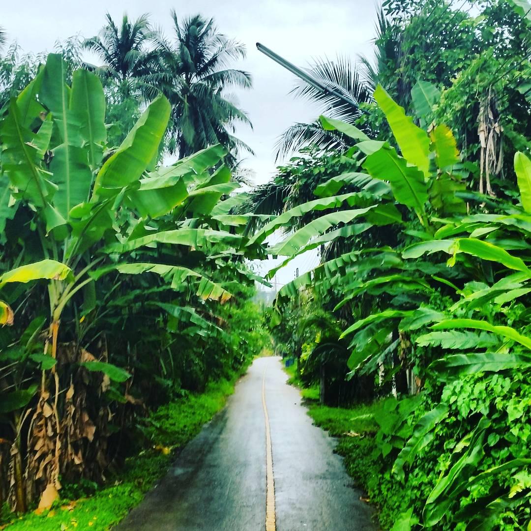 Încă o poveste din Thailanda! Monkey Beach, Maya Bay, Phi Phi Island. 3