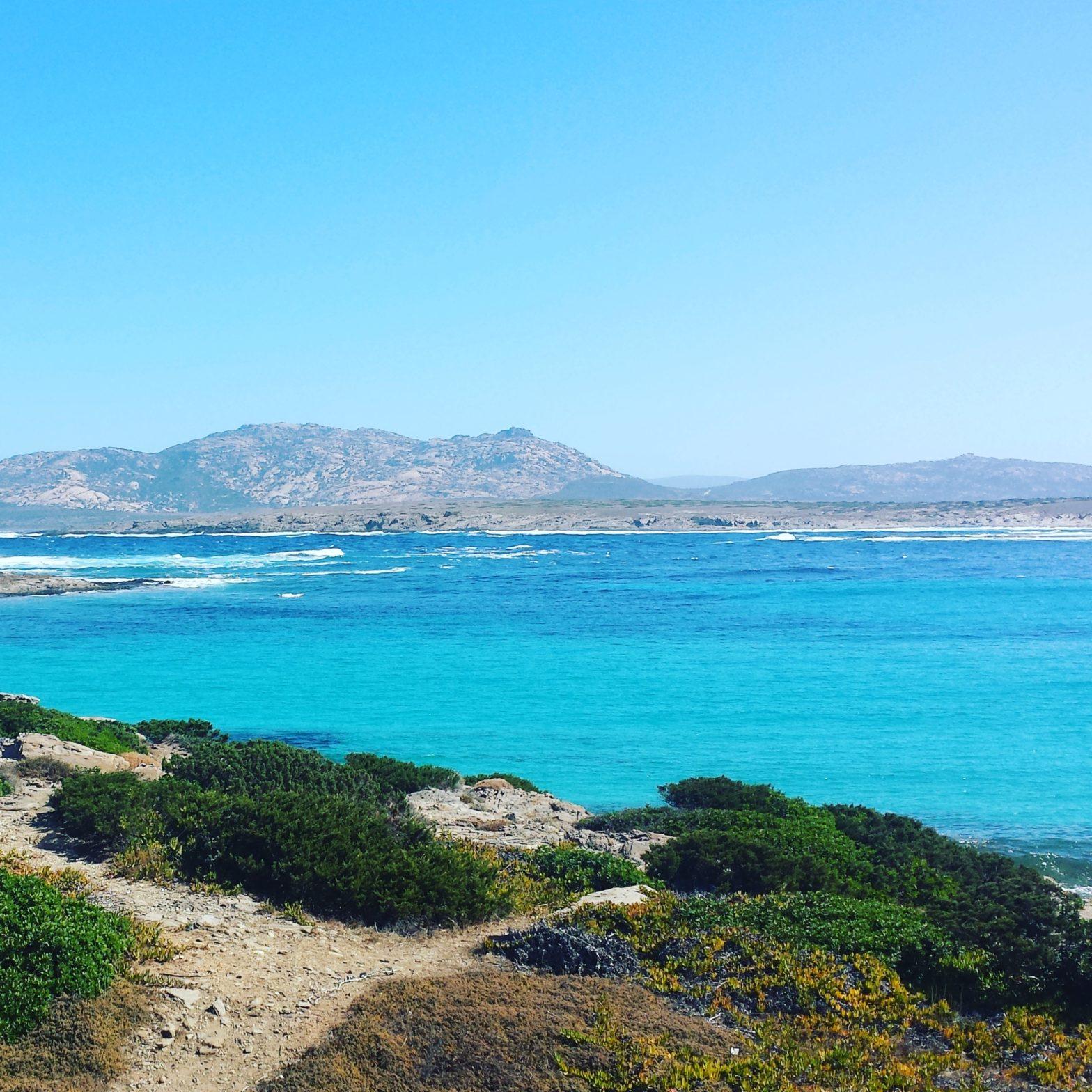 O plajă de vis! Stintino ,, Spiaggia La Pelosa''-Sardinia, Italia. 2