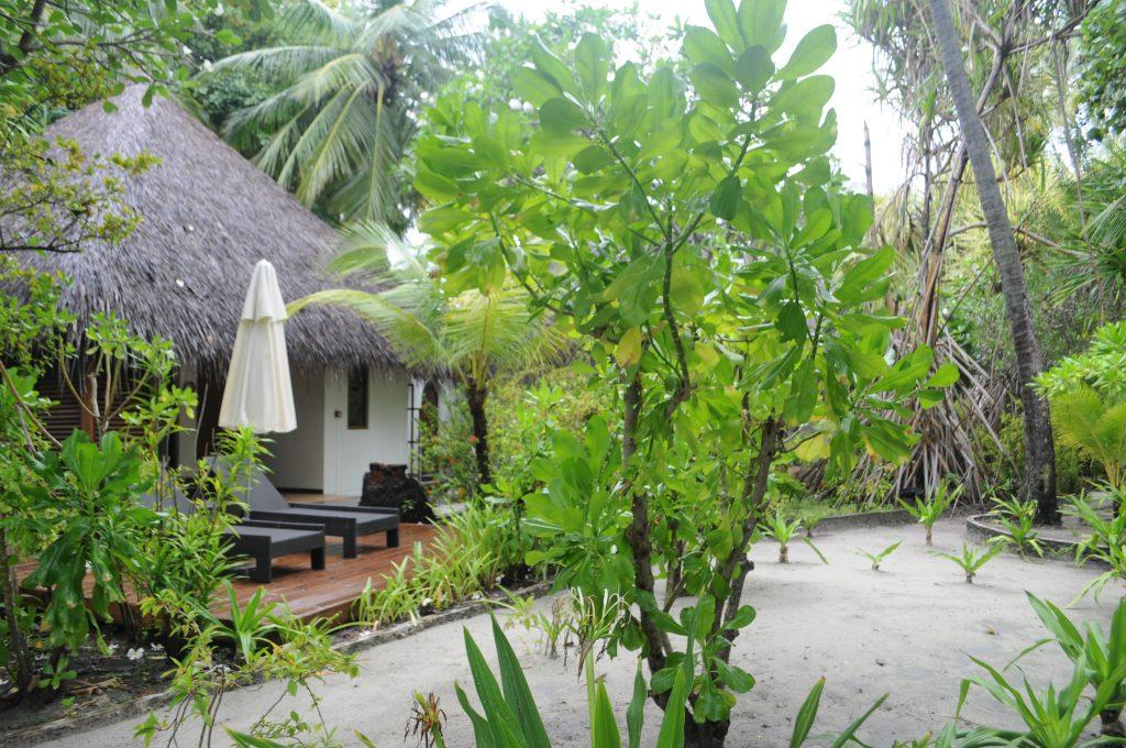 O insula de vis- Kurmathi, Maldives! 13