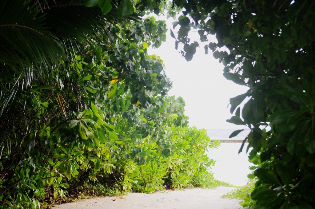 O insula de vis- Kurmathi, Maldives! 7