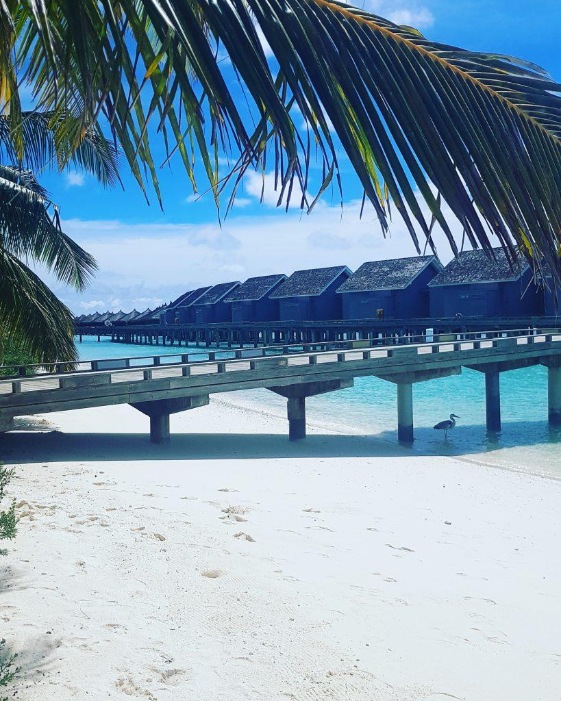 O insula de vis- Kurmathi, Maldives! 8